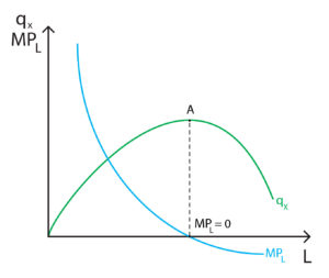 Marginal product of labour